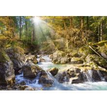 Пазл Castorland, 2000 элементов - Лесной ручей