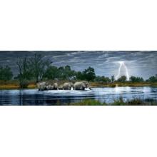 Пазл Heye, 2000 элементов - Стадо слонов