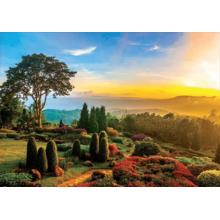 Пазл Educa, 1000 элементов - Красивый сад