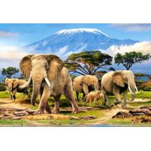 Пазл Castorland, 1000 элементов - Слоны