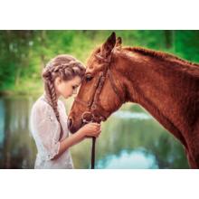 Пазл Castorland, 500 элементов - Девушка и лошадь