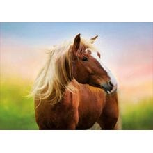Пазл Educa, 500 элементов - Лошадь на рассвете