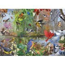 Пазл Cobble Hill, 1000 элементов - Птицы по временам года