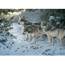 Пазл Cobble Hill, 1000 элементов - Волчья тропа