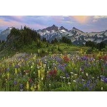 Пазл Heye, 2000 элементов - Цветы в горах