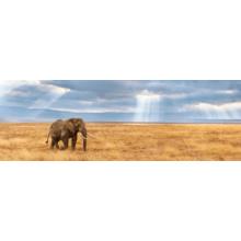 Пазл Clementoni, 1000 элементов - Потерявшийся слон