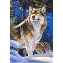 Пазл Castorland, 1000 элементов - Страж. Волк