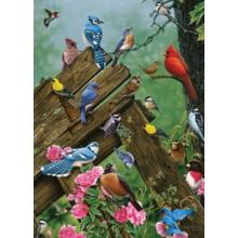 Пазл Cobble Hill, 1000 элементов - Лесные птицы