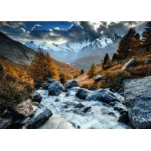 Пазл Heye, 1000 элементов - A. von Humboldt: Горный поток