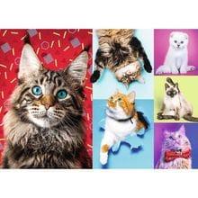 Пазл Trefl, 1000 элементов - Счастливые кошки