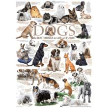 Пазл Cobble Hill, 1000 элементов - Породы собак