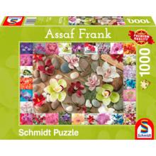 Пазл Schmidt, 1000 элементов - Ассаф Франк. Орхидеи