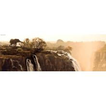 Пазл Heye, 1000 элементов - Слон, Humboldt