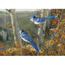 Пазл Cobble Hill, 1000 элементов - Лесные голубые сойки