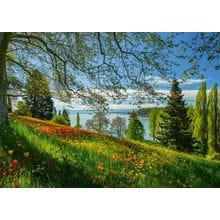 Пазл Schmidt, 1000 элементов - Цветение тюльпанов. Остров Майнау
