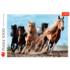 Пазл Trefl, 1000 элементов - Лошади