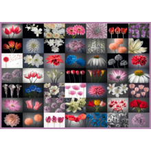 Пазл Schmidt, 2000 элементов - Коллаж. Цветы
