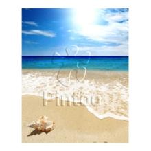 Пазл Pintoo, 500 элементов - Раковина на пляже