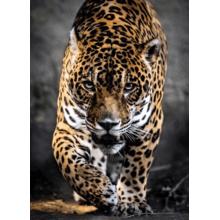 Пазл Clementoni, 1000 элементов - Охота ягуара