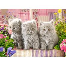Пазл Castorland 300 элементов - Три котенка
