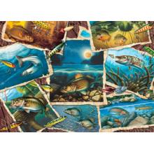 Пазл Cobble Hill, 1000 элементов - Фотоальбом рыб