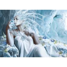 Пазл Schmidt, 1000 элементов - Ледяная фея