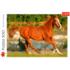 Пазл Trefl, 500 элементов - Красота галопа