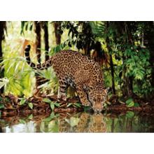 Пазл Clementoni, 2000 элементов - Леопард на водопое