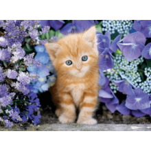 Пазл Clementoni, 500 элементов - Котенок в цветах