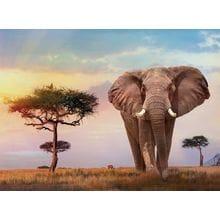 Пазл Clementoni, 500 элементов - Закат в Африке