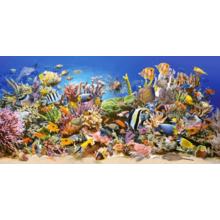 Пазл Castorland, 4000 элементов - Подводный мир