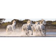 Пазл Clementoni, 1000 элементов - Бегущие лошади