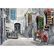 Пазл Castorland, 500 элементов - Красный велосипед