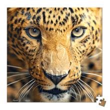 Пазл Pintoo, 256 элементов - Леопард