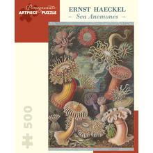 Пазл Pomegranate, 500 элементов - Эрнст Геккель: Морские анемоны