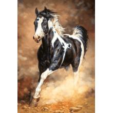 Пазл Castorland, 1000 элементов - Бегущая лошадь