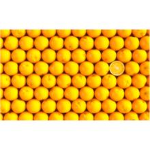 Пазл Pintoo, 1000 элементов - Апельсины