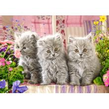 Пазл Castorland 260 элементов - Серые котята
