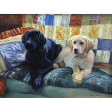 Пазл Cobble Hill, 275 элементов - Собаки на подушках