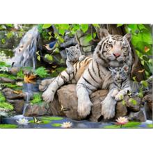 Пазл Educa, 1000 элементов - Белые Бенгальские Тигры
