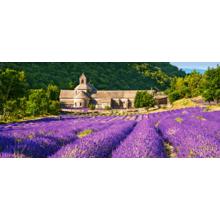 Пазл Castorland, 600 элементов - Нотр-Дам де Сенанк, Франция