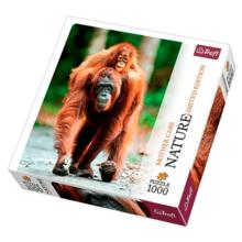 Пазл Trefl, 1000 элементов - Орангутанг с малышом, Индонезия