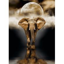 Пазл Clementoni, 1000 элементов - Слон
