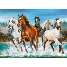 Пазл Castorland, 2000 элементов - Бегущие лошади