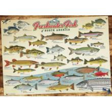 Пазл Cobble Hill, 1000 элементов - Пресноводные рыбы Сев. Америки