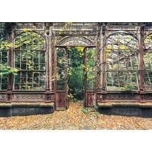 Пазл Schmidt, 1000 элементов - Вилетт: Заброшенная оранжерея