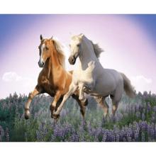 Пазл Clementoni, 500 элементов - Свободные лошади