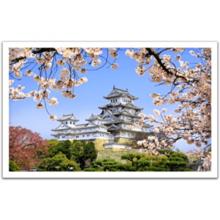 Пазл Pintoo, 1000 элементов - Цветущая сакура в храме Химедзи