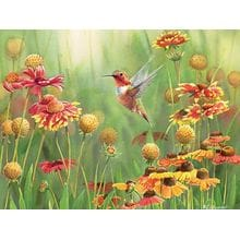 Пазл Cobble Hill, 500 элементов - Рыжий колибри