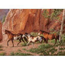 Пазл Cobble Hill, 1000 элементов - Chris Cummings Лошади в каньоне